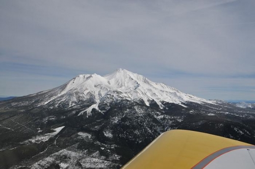Enroute To Albany - Shasta