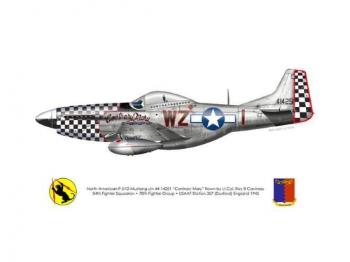 Roy Caviness' P-51D